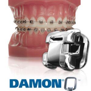 damon-q